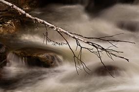 Branche au dessus de la cascade de Upper Amoonoosuc Falls, White Mountains National Forest - New-Hampshie, USA