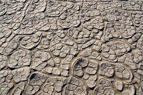 Craquelures dans le sol desséché de la vallée de la Mort, Californie, USA