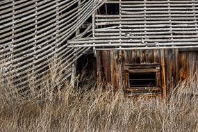 Vestiges d'une ferme abandonnée.