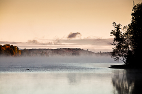 Brume au petit matin en automne, Moosehead Lake, Maine, Maine, USA