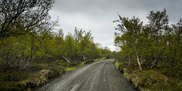 Sur la piste F862 vers le Sud, Islande