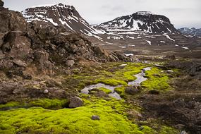 Mousse fluorescente, torrent et neige dans les Fjords de l'Ouest, Islande