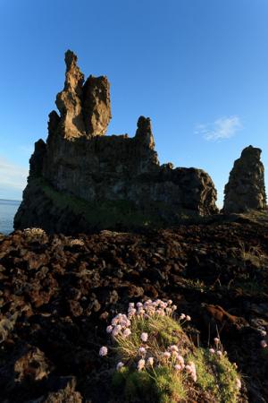 Rochers de Londrangar, Péninsule de Snæfellsnes, Islande