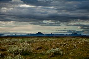Paysage, à proximité du site de Gullfoss, Cercle d'or, Islande