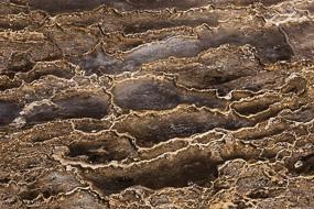 Dépôts de silice formés en strates, Hveravellir, Islande