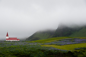 Eglise de Vik, avec des champs de lupins, dans les nuages, Islande