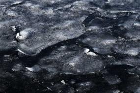 Détail de glace à la surface de l'eau , Islande