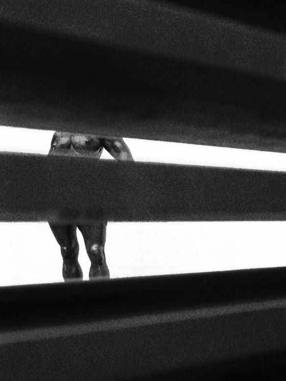 Le voyeur du MOMA